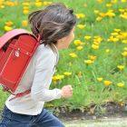 子どもの教育資金は学資保険