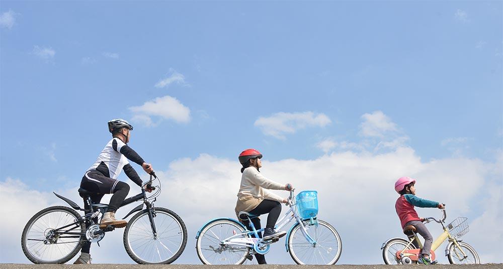 自転車保険のランキング